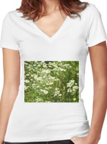 Herbs on the lawn - small white camomile flowers Women's Fitted V-Neck T-Shirt