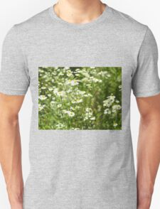 Herbs on the lawn - small white camomile flowers T-Shirt