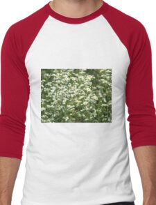 Herbs on the lawn - camomile flowers Men's Baseball ¾ T-Shirt