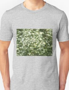 Herbs on the lawn - camomile flowers T-Shirt