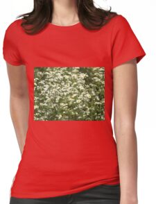 Herbs on the lawn - camomile flowers Womens Fitted T-Shirt