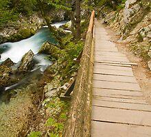 The Soteska Vintgar gorge by Ian Middleton