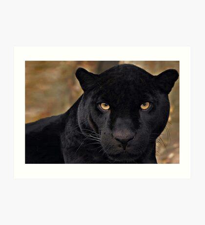 The Black Panther Art Print
