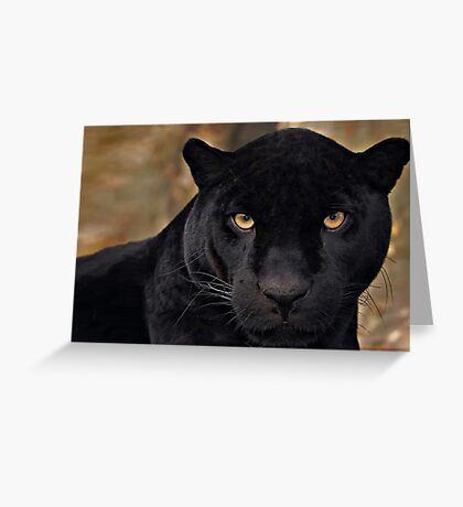 The Black Panther Greeting Card