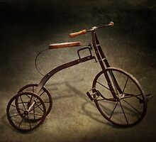 Bike - The Tricycle  by Mike  Savad