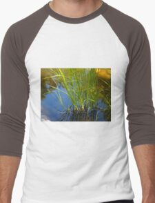 Water reeds growing out of the water Men's Baseball ¾ T-Shirt