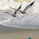 Pelican Pair with Surf and Beach Chairs by Kenneth Keifer