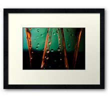 Ode to glass (8) Framed Print