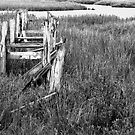 The Old Dock by Glennis  Siverson