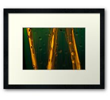 Ode to glass (10) Framed Print