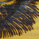 Pyrography Palm Frond by Bearie23