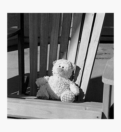 Sad Bear Photographic Print