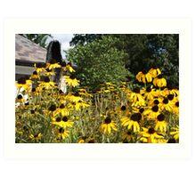 Sunflowers... Art Print