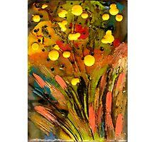 Yellow buds Abound Photographic Print
