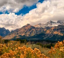 Wild Flowers and Teton Mountains III Sticker