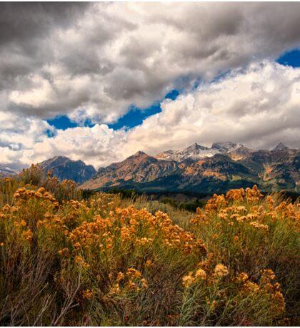 Wild Flowers and Teton Mountains III Sticker