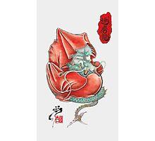 Dharma Dragon Photographic Print