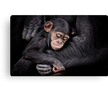 Protection II Canvas Print