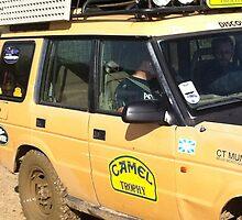 cammel close up by landytrialer