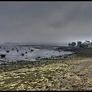 The port of Landevennec by jean-jean