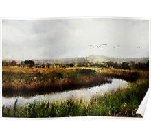 Wetlands Landscape Poster