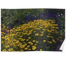 Cottage garden Poster