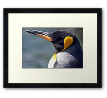 Emperor Penguin Framed Print