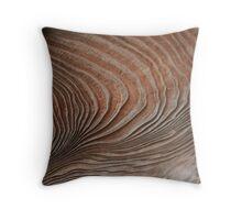 Textured Wood in Kamakura Temple, Japan Throw Pillow