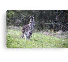 Mummy and Joey Canvas Print