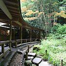 Autumn in Japan - Traditional Japanese Tea Room in Kamakura by Bruno Beach