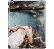 The River Soca iPad Case/Skin