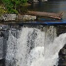 Bushkill Creek at Ressica Falls by Imagery