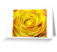 Tequila Sunrise Rose Greeting Card
