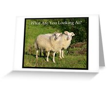 Nature Series/Humor/What Are You Looking At? Greeting Card