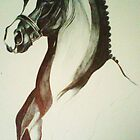 stallion by Beth Whitcombe