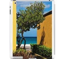 Caribbean Colour iPad Case/Skin