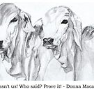 It wasn't us! Who said it? Prove it! by Donna Macarone