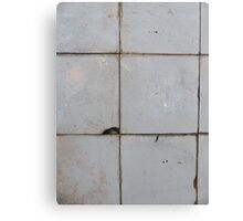 Old ceramic tile in usesd look  Canvas Print