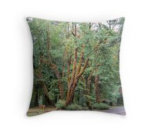 Schafer State Park, Washington Throw Pillow