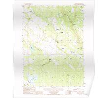 USGS Topo Map Oregon Brady Butte 279115 1988 24000 Poster