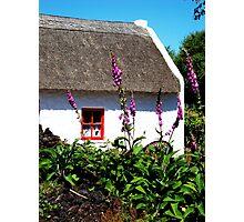 Irish Summer - Kerry, Ireland Photographic Print