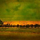 English summer field by Sonia de Macedo-Stewart