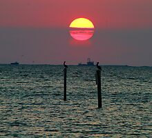 End of the Day on the Gulf by Brenda Burnett