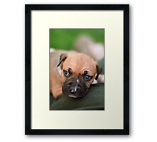 Cuddle Time Framed Print