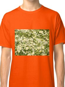 Green field with white daisies closeup Classic T-Shirt