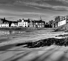 Stonehaven Harbour by laidbackdave