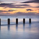 Groynes in the Gloaming, Findhorn by Christopher Thomson