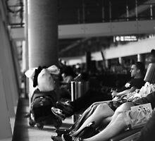 In transit ... by Ell-on-Wheels