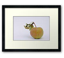 Russet  Framed Print