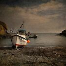 Cadgwith Cove by eddiej